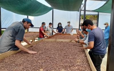 Empresa Francesa muestra interés en cacao salvadoreño